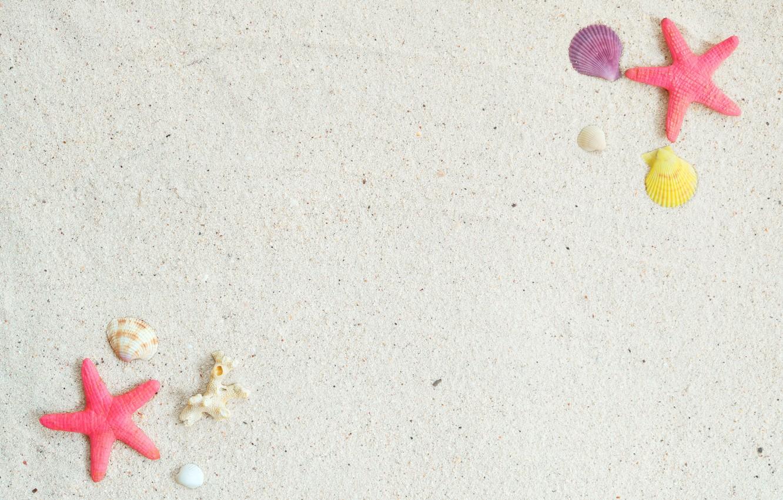 Фото обои песок, пляж, фон, звезда, ракушки, summer, beach, sand, marine, starfish, seashells