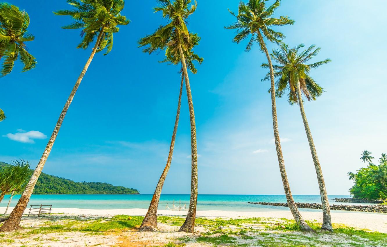 Фото обои песок, море, волны, пляж, лето, небо, пальмы, берег, summer, beach, sea, seascape, beautiful, sand, paradise, …