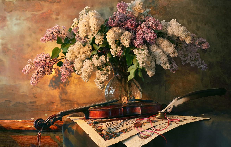 Фото обои стиль, перо, скрипка, букет, натюрморт, сирень, Андрей Морозов
