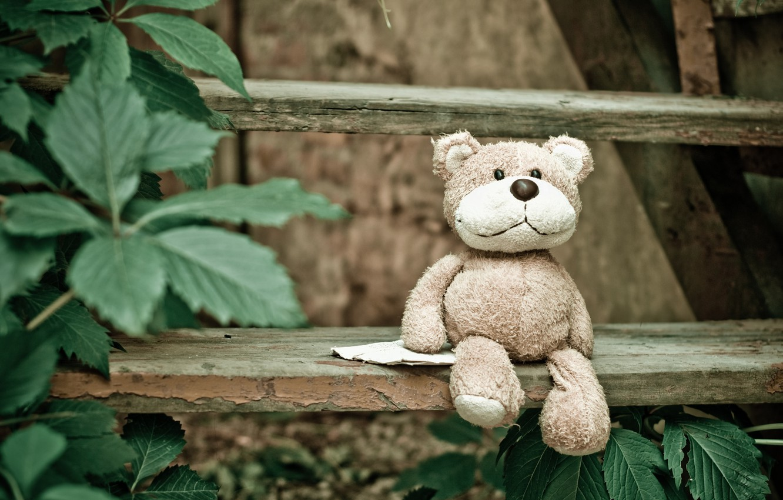 Обои little, Teddy, Медведь, bed, cute, мишка. Разное foto 16