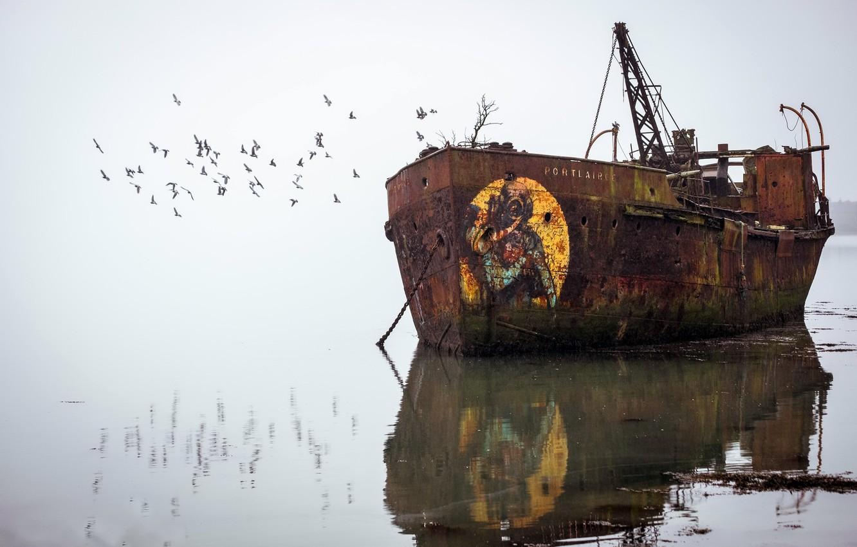 Фото обои птицы, туман, корабль