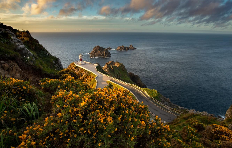 Фото обои дорога, море, пейзаж, закат, цветы, природа, скалы, маяк