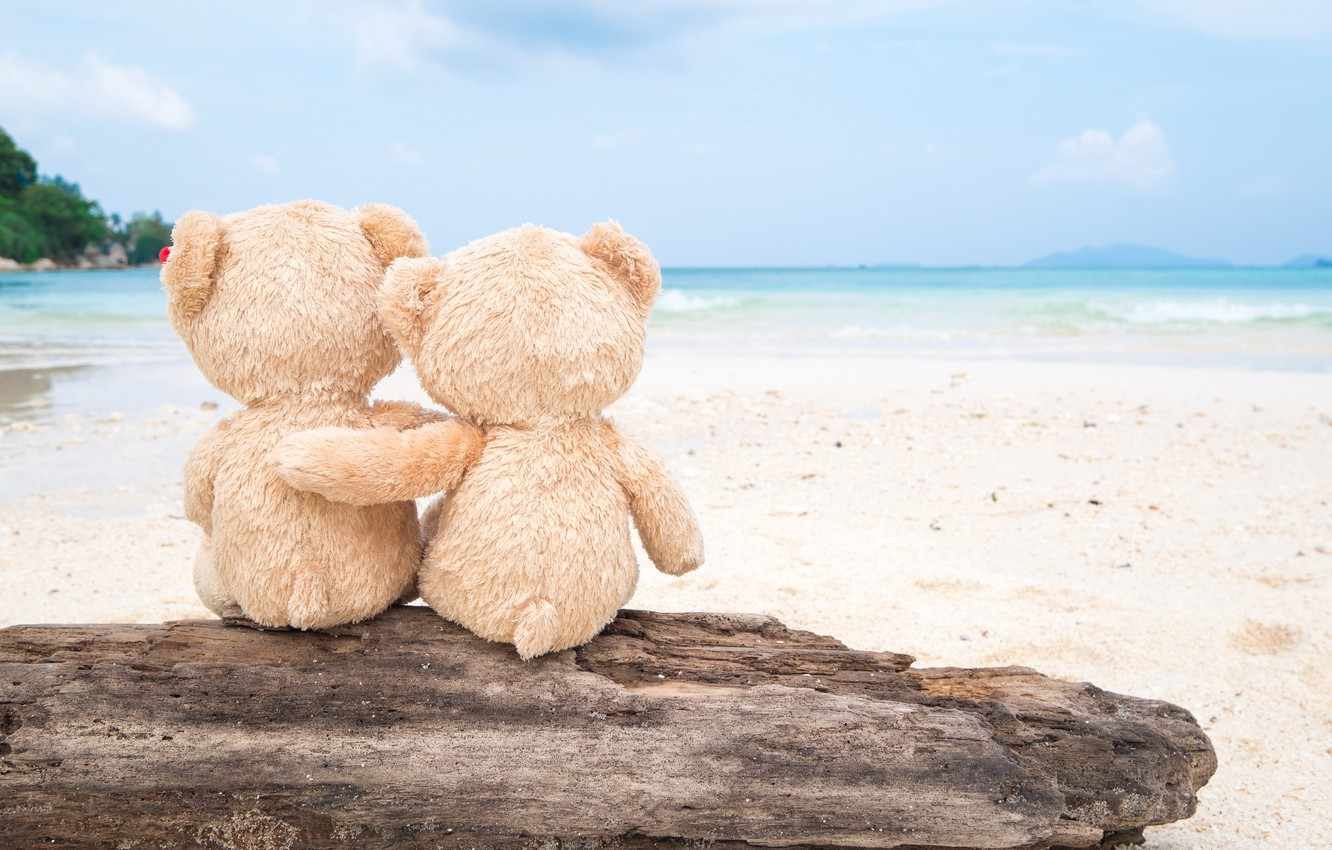 https://img5.goodfon.ru/wallpaper/nbig/4/b7/love-bear-sea-more-sand-para-pesok-romantic-pliazh-liubov-be.jpg