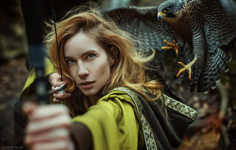 Фото обои взгляд, девушка, лицо, птица, лук, сокол, Marketa Novak, Hana Vágnerová