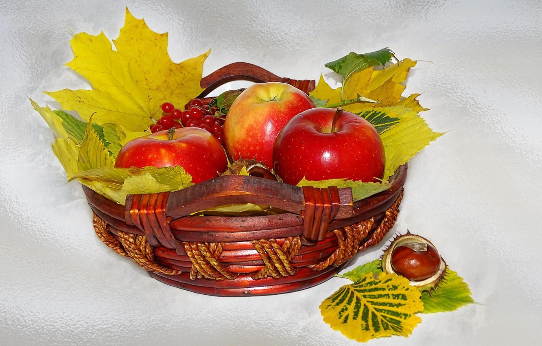 Фото обои природа, настроение, яблоки, красота, корзинка, красивые, beautiful, beauty, harmony, обои на рабочий стол, cool, bouquet, ...