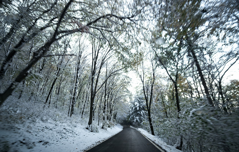 Фото обои Зима, Дорога, Снег, Лес, Winter, Snow, Road, Forest