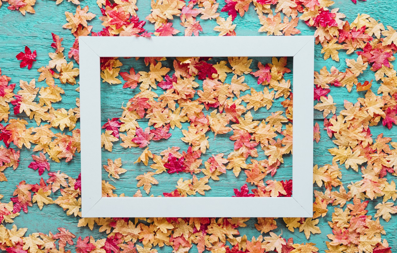 Фото обои осень, листья, фон, доски, colorful, клен, wood, background, autumn, leaves, осенние, maple