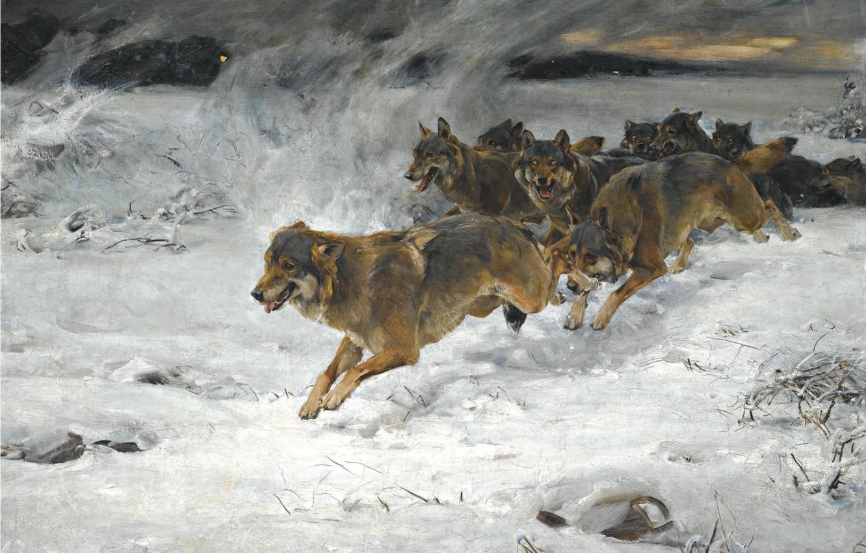 Фото обои собаки, снег, рассвет, стая, художник, Alfred Kowalski-Wierusz