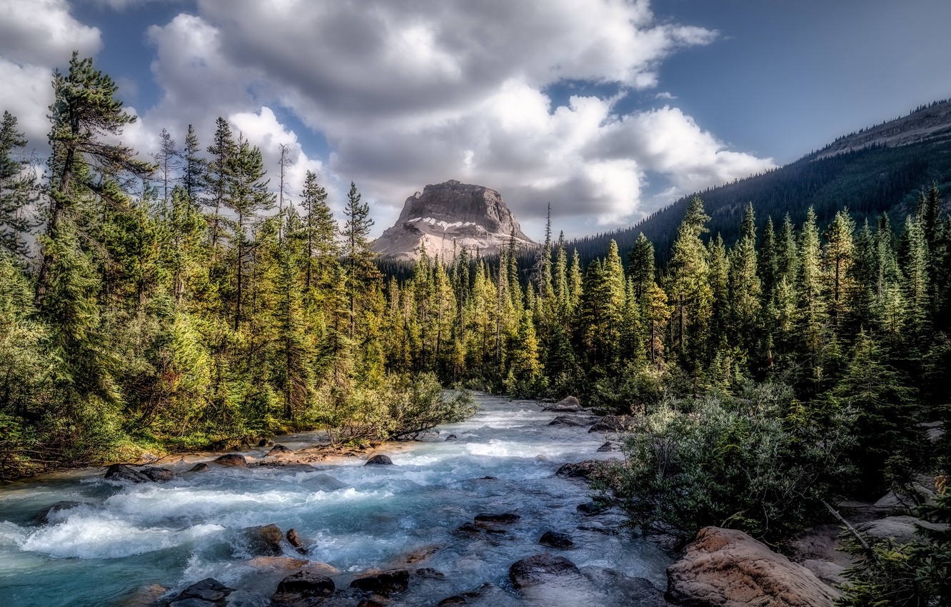 Фото обои forest, Canada, river, sky, trees, nature, water, mountains, clouds, rocks, landscapes, sunlight, stream, 4k ultra …