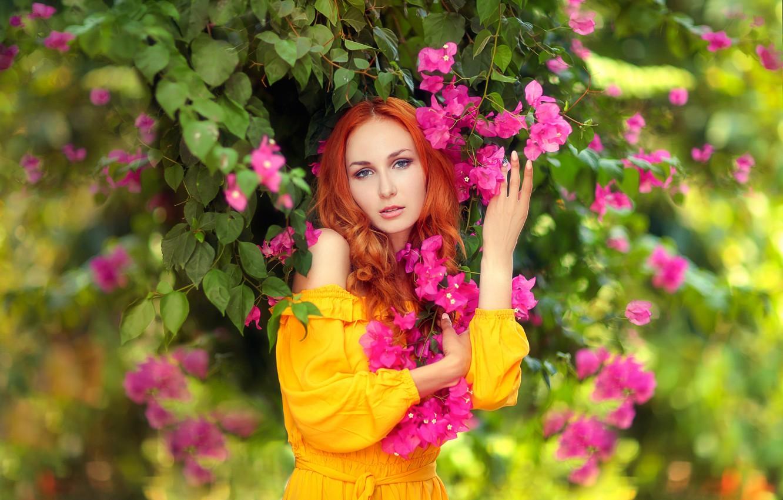 Фото обои взгляд, девушка, цветы, поза, портрет, руки, рыжая, рыжеволосая, бугенвиллия, Hakan Erenler, Анна Боевая