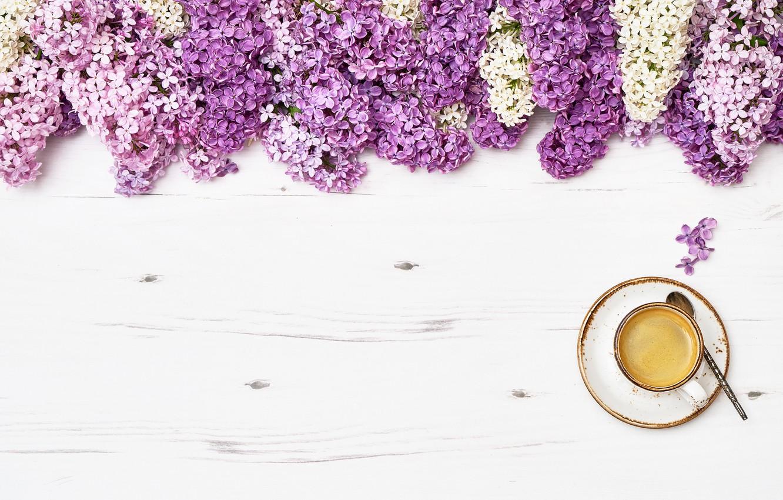 Фото обои цветы, flowers, сирень, romantic, coffee cup, lilac, чашка кофе