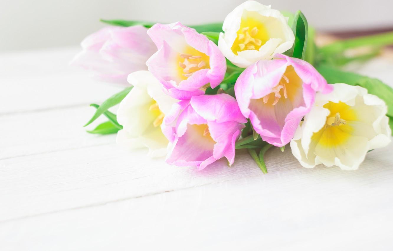 Фото обои цветы, букет, тюльпаны, love, розовые, white, fresh, pink, flowers, romantic, tulips, spring