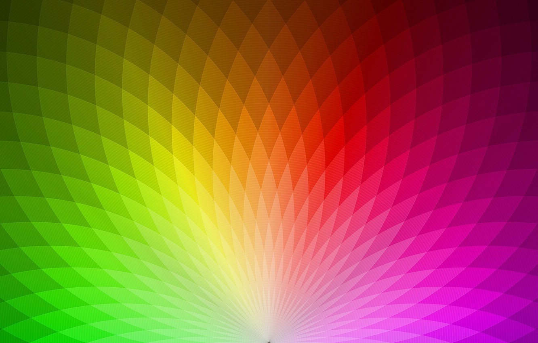 Фото обои цвет, красиво, обои 1920x1080