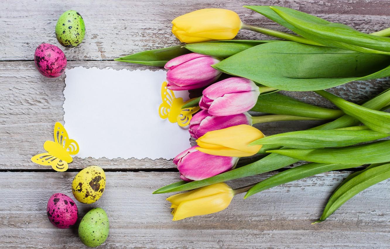 Фото обои цветы, яйца, colorful, Пасха, тюльпаны, happy, pink, flowers, tulips, Easter, eggs