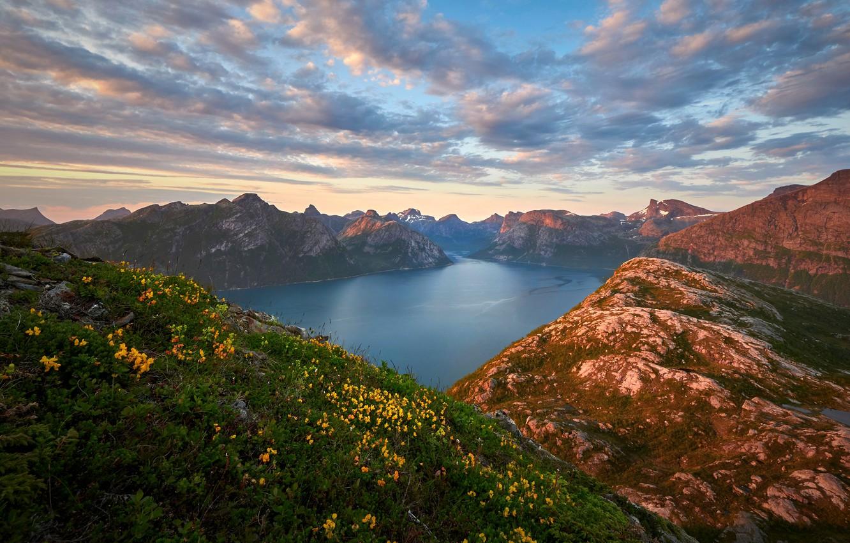 Фото обои облака, цветы, горы, Норвегия, фьорд