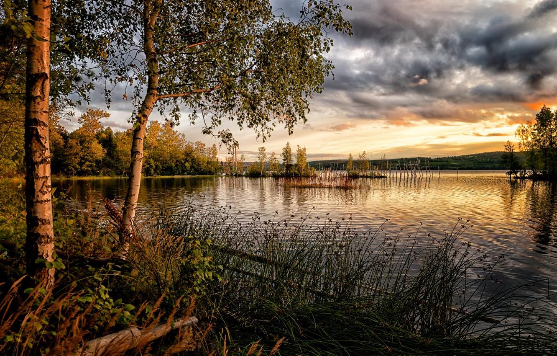 Фото обои небо, трава, тучи, озеро, фото