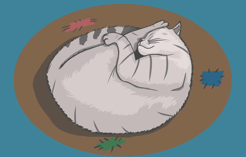 Фото обои кот, рисунок, кот спит
