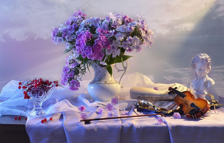 Фото обои цветы, ягоды, ноты, скрипка, розетка, ткань, скульптура, кувшин, натюрморт, смородина, бюст, салфетка, поднос, флоксы, Валентина …