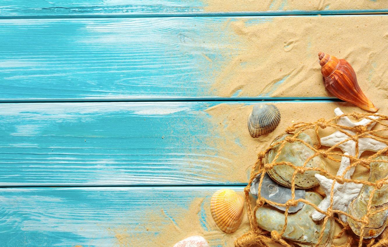 Фото обои песок, пляж, ракушки, beach, wood, sand, marine, still life, seashells