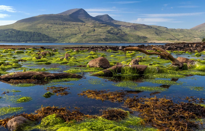 Фото обои Scotland, Isle of Mull coastline, Killunaig