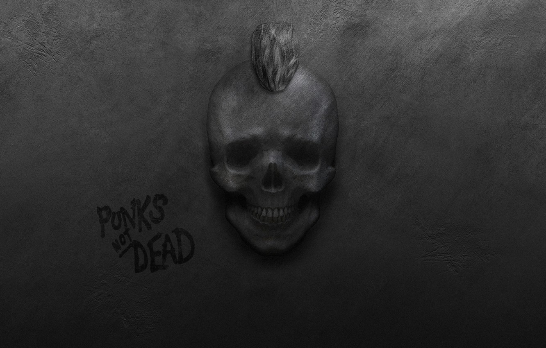 Фото обои стена, череп, панки, ирокез, панк-рок, punks not dead, панки живы