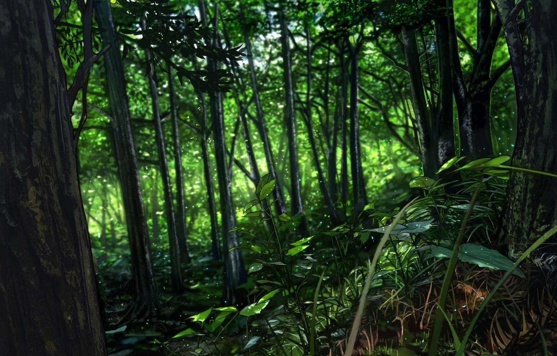 Фото обои лес, блики, утро