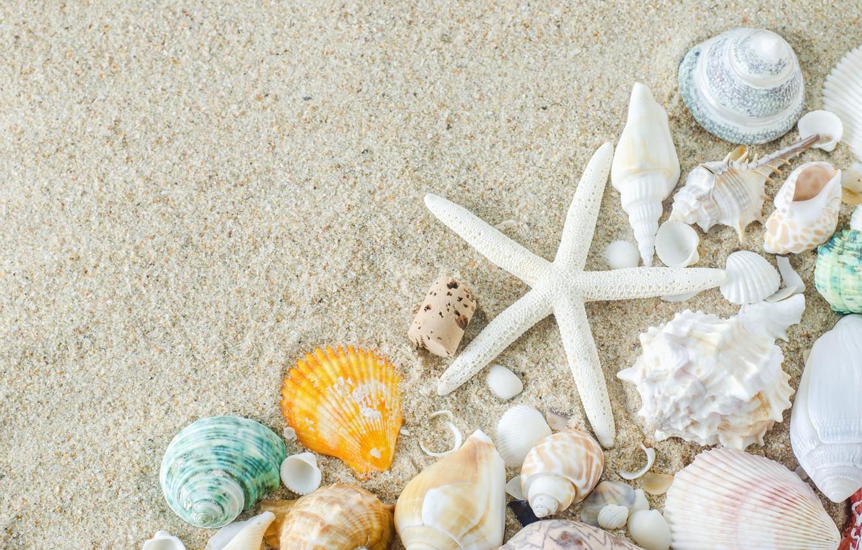 белый морской песок фото отличие лесенок такие