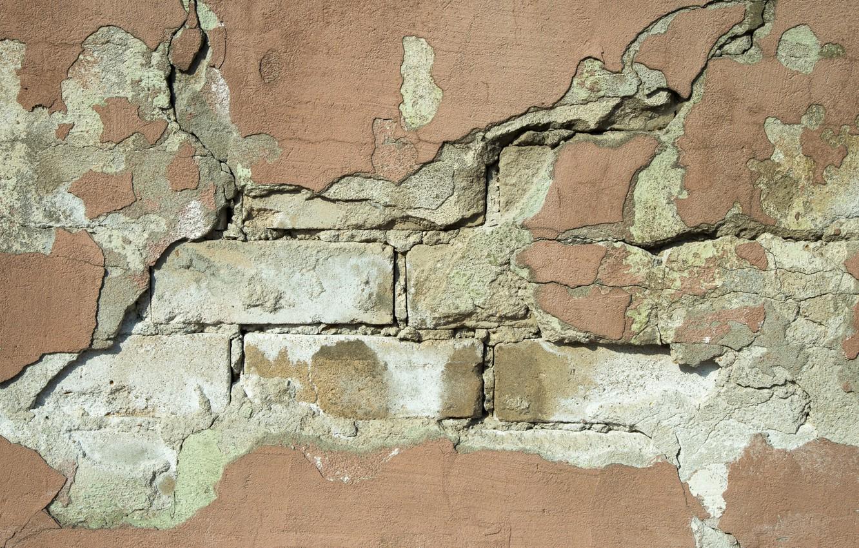 Фото обои wall, bricks, hollow
