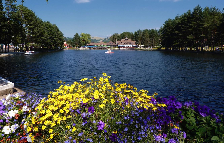 Фото обои цветы, Сербия, Озеро Златибор