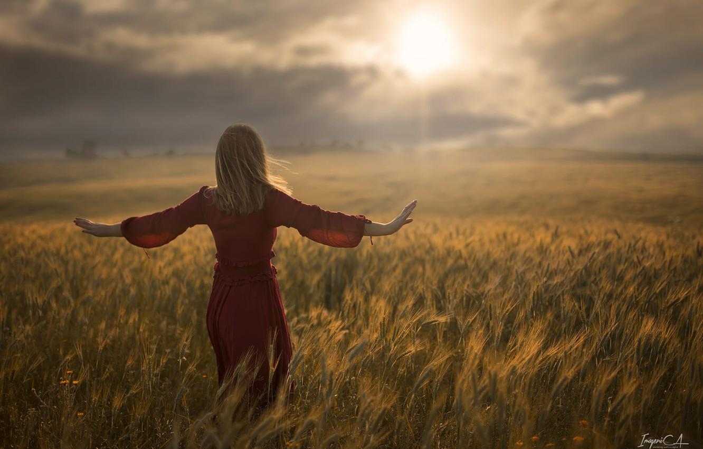 Фото обои пшеница, поле, девушка, солнце, ветер, спина, Antonio A Conde