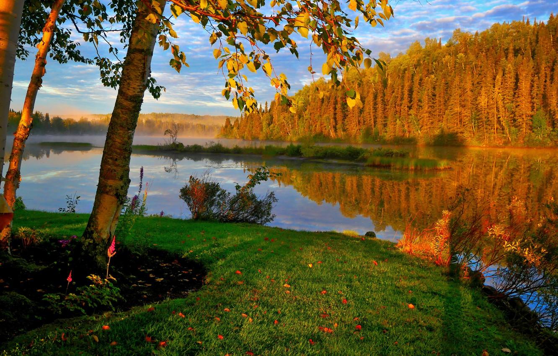 Фото обои осень, лес, небо, деревья, отражение, рекa