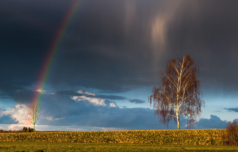 Обои свет, Облака. Природа foto 12