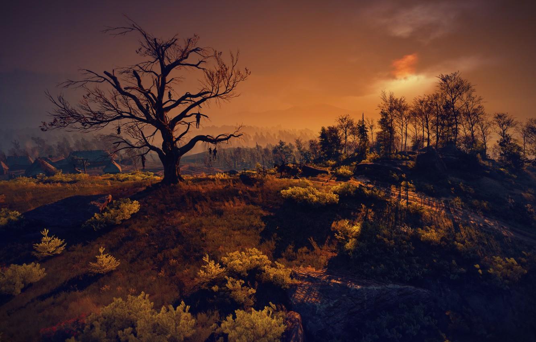 Фото обои Ведьмак, The Witcher, The Witcher 3: Wild Hunt, Ведьмак 3: Дикая Охота, Velen, Дерево висельников