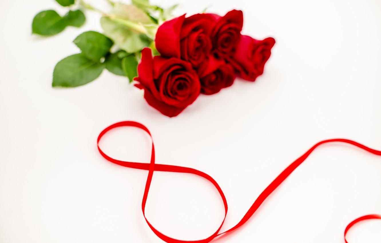 Фото обои цветы, розы, лента, красные, red, 8 марта, flowers, romantic, roses