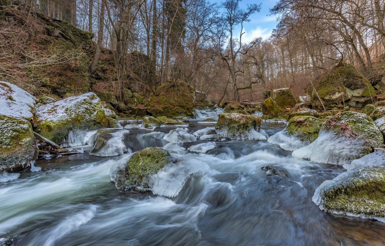 Фото обои лес, камни, мох, лёд, Германия, речка, frozen, South Eifel