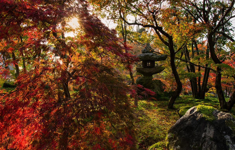 Фото обои осень, солнце, лучи, пейзаж, природа, парк, камни, Япония, сад, фонарь