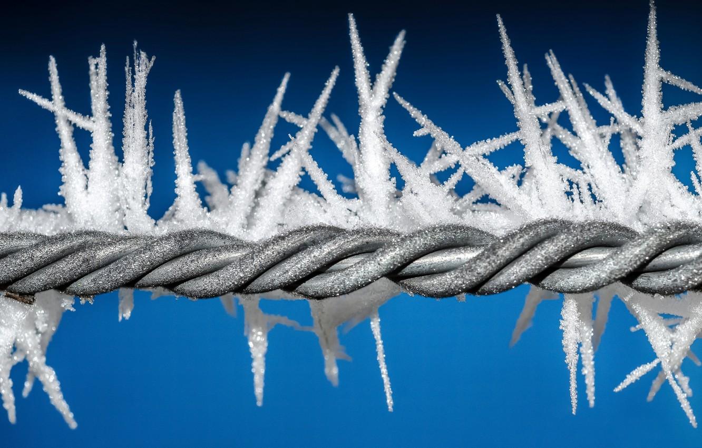 Фото обои холод, иней, проволока, мороз, кристаллы