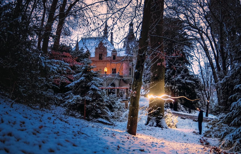 Фото обои зима, лес, свет, деревья, пейзаж, природа, парк, замок, Швейцария, особняк