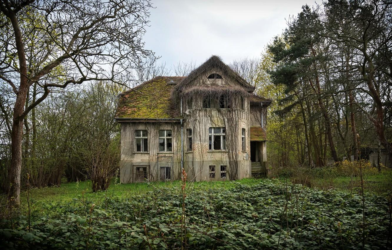 Фото обои house, abandoned, end of the street