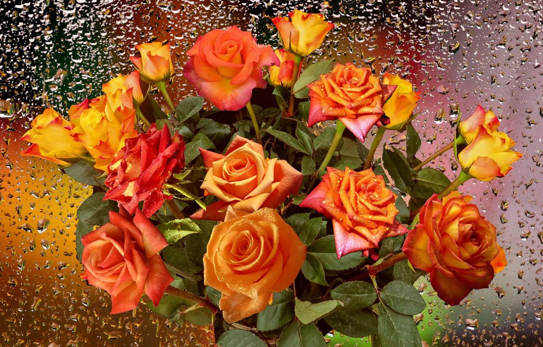 Фото обои капли, дождь, розы, Осенний букет
