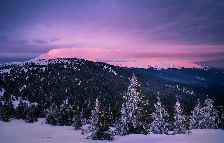 Фото обои зима, облака, снег, пейзаж, горы, природа, леса, Карпаты, Дмитрий Иванов