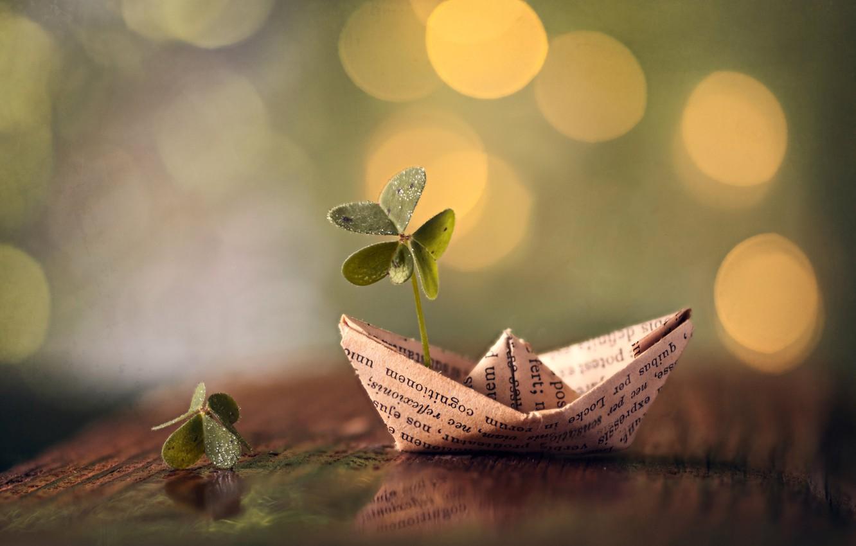Фото обои листья, макро, клевер, кораблик, боке