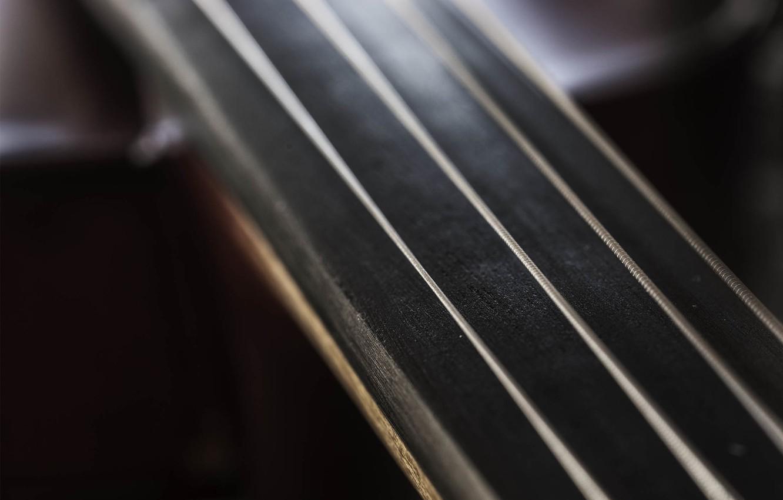 Фото обои макро, струны, инструмент