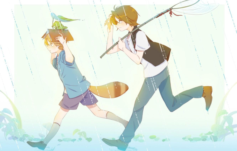 Фото обои дождь, лягушка, хвост, книга, мальчики, The Eccentric Family, Uchouten Kazoku