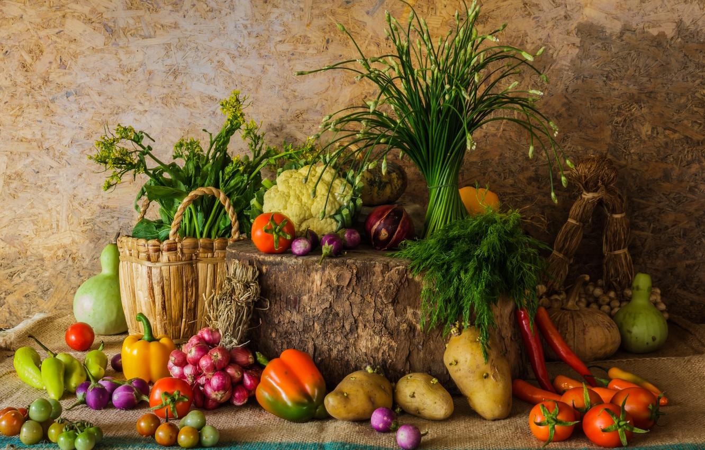 Фото обои осень, урожай, тыква, натюрморт, овощи, autumn, still life, pumpkin, vegetables, harvest