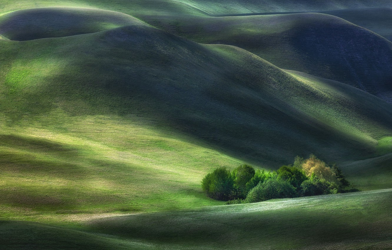 Фото обои пейзаж, природа, холмы, растительность