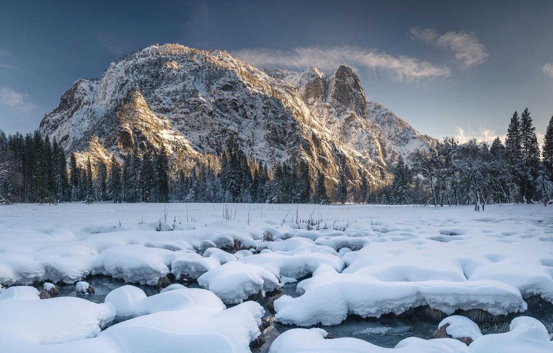 Фото обои зима, лес, снег, горы, Калифорния, California, Национальный парк Йосемити, Yosemite National Park, Сьерра-Невада, Sierra Nevada