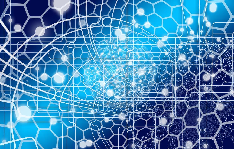 Фото обои сеть, паутина, интернет, web