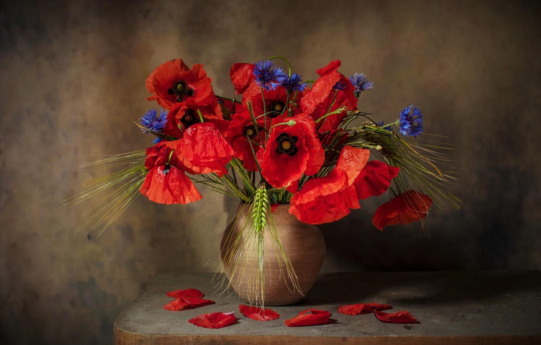 Фото обои цветы, темный фон, стол, рожь, маки, букет, лепестки, красные, ваза, колосья, натюрморт, васильки, композиция, керамика