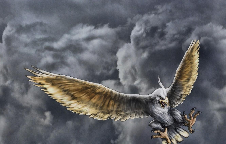 Фото обои полет, тучи, орел, рисунок